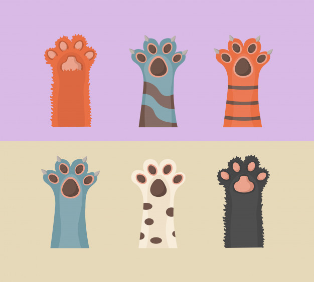 cat-dog-paws-background-prints-cartoon-cute-animals-legs-wallpaper-brochure-flyer-postcard-paws-up-animals-isolated-white-background-flat-design_167581-761